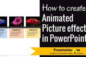 How to create Animated Picture Effects in PowerPoint ( 3 of 3)
